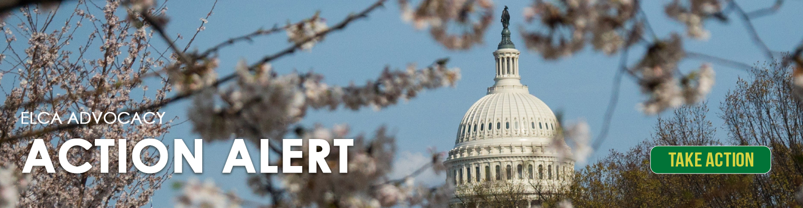 Advocacy Action Alert Capitol